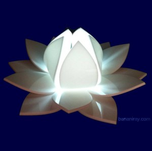 lighted lotus